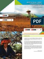 Adaptación al Cambio Climático para la Competitividad Agropecuaria