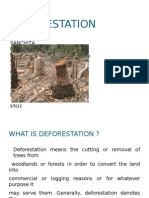 Deforestation - Final Prroject