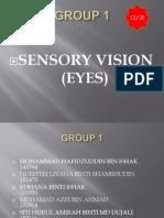 Group+1 Sensory+Receptor Vision