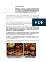 Gastronomía en la costa Pacífica colombiana (Autoguardado)