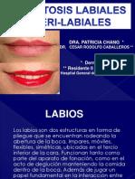 Dermatosis labiales y peri-labiales