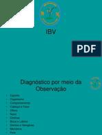 Aula IV - Diagnóstico para avaliação, ciclos e teoria dos meridianos