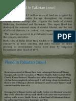 Flood in Pakistan (2010)