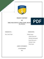 Final Report OSD