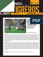 MERELLE DHERVE 2010 Environmental Enrichment for the Jaguar TIGREROS REPORT 3