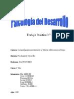 TRABAJO PRACTICO PSICOLOGIA DEL DESARROLLO NIÑEZ