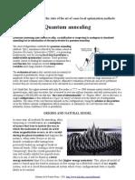 Quantum annealing algorithm description