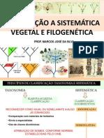Introdução a Sistemática Vegetal e Filogenética