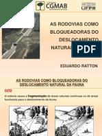 AS RODOVIAS COMO BLOQUEADORAS DO DESLOCAMENTO NATURAL DA FAUNA