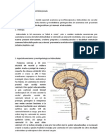 Hidrocefalia Scribd