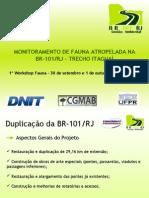 Monitoramento de Fauna Atropelada na BR-101/RJ - Trecho Itaguai