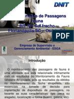 BR-101 - Fauna Passagens
