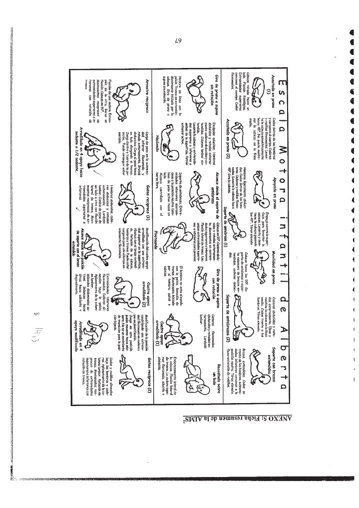 alberta infant motor scale manual pdf
