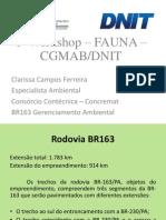 Monitoramento de Fauna/ BR-163