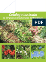 80 Plantas Medicinales del Paraguay - PortalGuarani