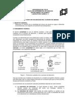 Práctica_Nº_6 (LQG)2010