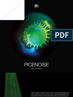 Picenoise
