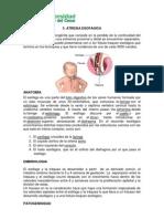 atresia esofagica