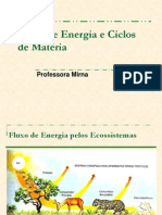 Ciclos de Matéria e Fluxo de Energia- 9o ano