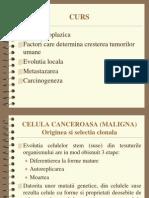 Celula Canceroasa Si Carcinogeneza 2004-2005[1]