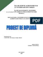 Proiect Diploma - Arad