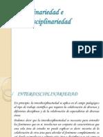 Disciplinariedad e Interdisciplinariedad Fani Joseruben Martin