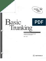 Basic Trunking