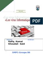 Rapport Sur Les Virus que