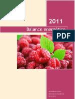 Balance Energético =)