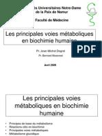 Les_voies_métaboliques_revu