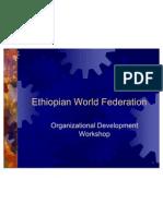 ethiopian world federation change workshop