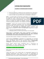 Apontamentos_Sociologia das Organizações