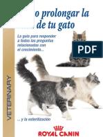 03.Folleto Castrado de Gatos