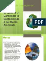 Presentacion Del Milenio