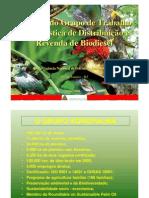 Logistica de Biodiesel Agropalma