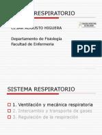 presentacion sisteama respiratorio
