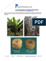 Feasibility Biomass Fuel Briquettes From Banana Plant Waste