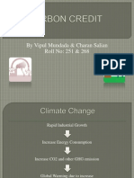 Carbon Credit 07.09.11