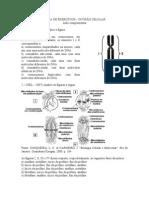 LISTA DE EXERCÍCIOS divisão celular