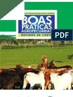 BOVINO DE CORTE