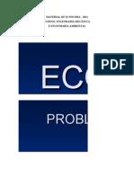 Material de Economia - Engenharia 2011
