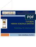 Hernia Scrotalis Sinistra