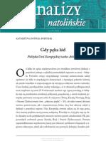 Natolin_Analiza_1_2011