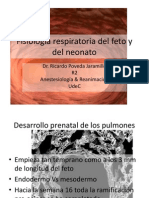 Fisiologia Respiratoria Del Feto y Del Neonato