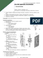 Anatomía del aparato locomotor (Quiromasaje)
