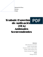 Animales Sorprendes Documento Final Tea 2010