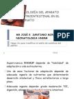 EXPO  FISIOLOGÍA DEL APARATO GASTROINTESTINAL EN EL RN