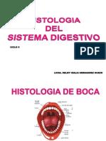 Histologia de Boca Esofago y Estomago 2011