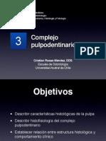 Histología Oral - Pulpa