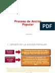 Accion Popular - Expo